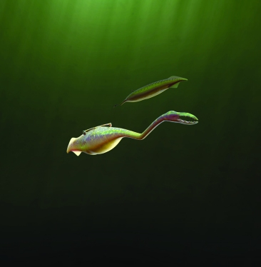 The Tully Monster (image for press release)
